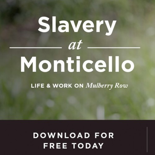 life with a slave download