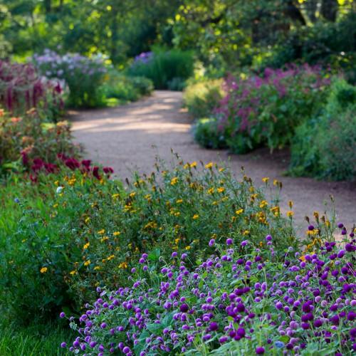 Farm Gardens Thomas Jefferson S Monticello