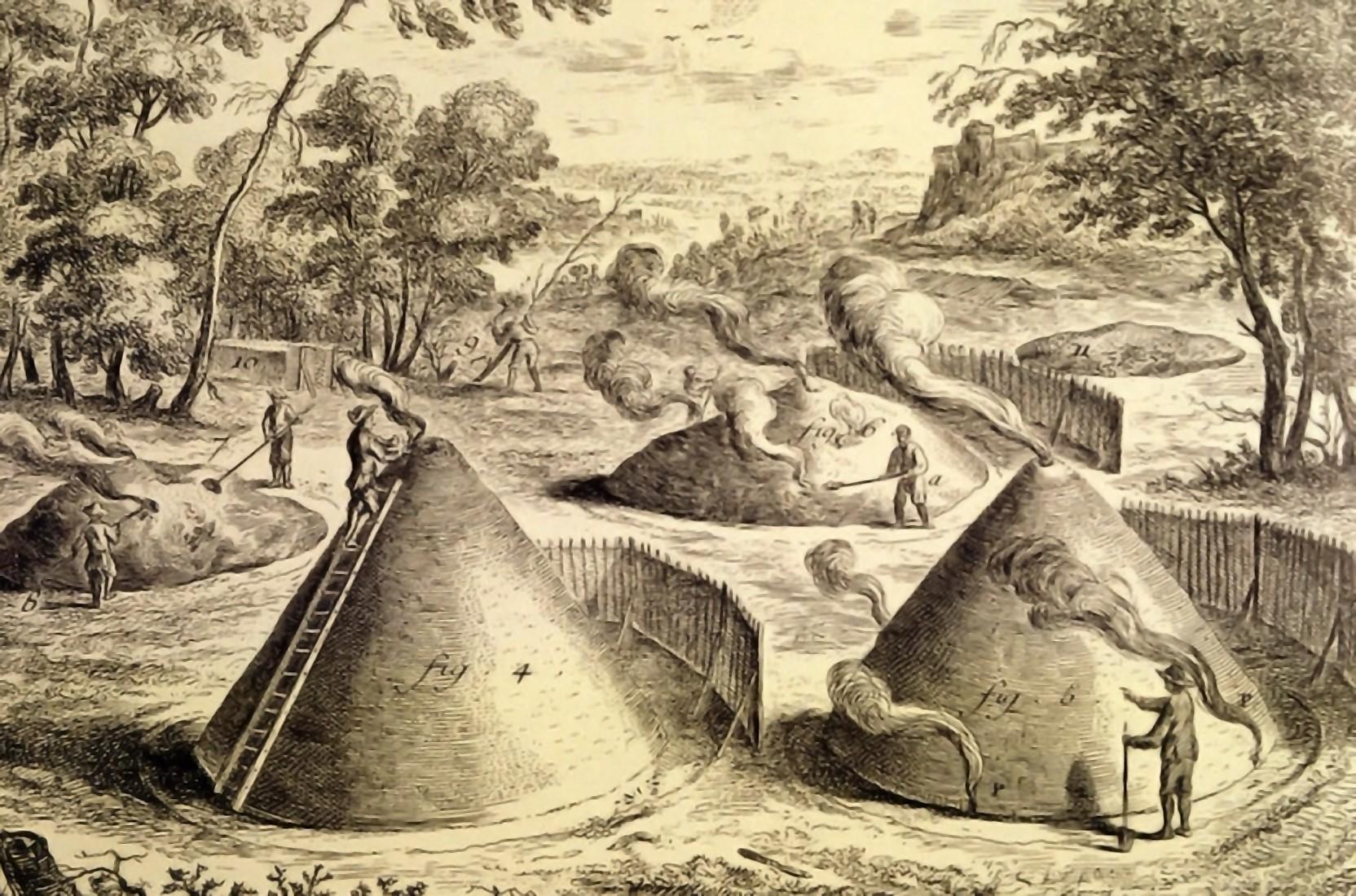 """<strong>""""Charbon de Bois,""""</strong> <em>L'Encyclopédie</em> by Denis Diderot and Jean Le Rond D'Alembert"""
